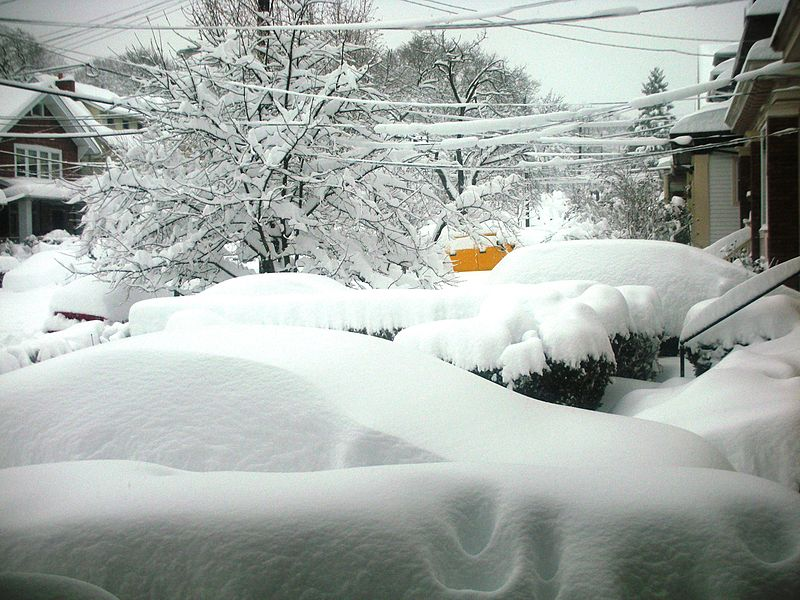 Snow in Pittsburgh 2010; from Wikimedia Commons
